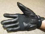 090530_glove2.jpg